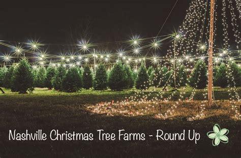 nashville christmas tree farms round up