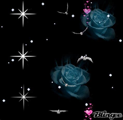 imagenes de rosas luminosas fondo negro movimiento fotograf 237 a 102795946 blingee com