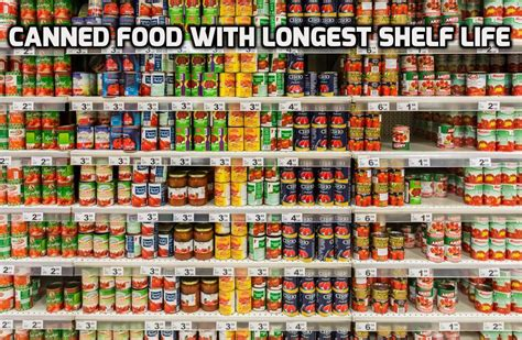 Shelf Of Canned Foods Past Expiration Date by Canned Food With Shelf