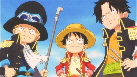 wallpaper luffy gif monkey d luffy ace gif find share on giphy