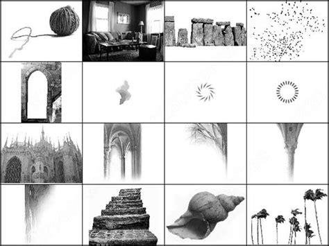 gothic pattern brush palm trees and gothic brush photoshop brushes in photoshop