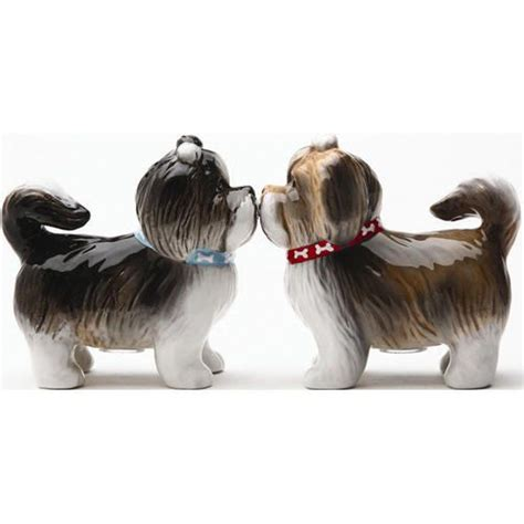 shih tzu salt and pepper 18 best images about shih tzu on photographs shih tzu and look alike
