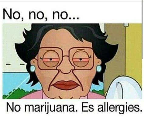 Family Guy Maid Meme - 17 best images about smoke weed on pinterest weed smoke