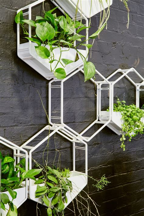 Planter Wall by Wabe Wall Planter Oblica Melbourne Modern Designer