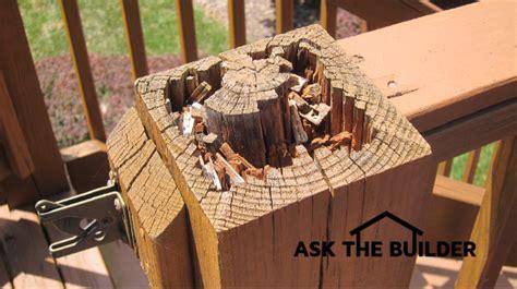 treated lumber rotting