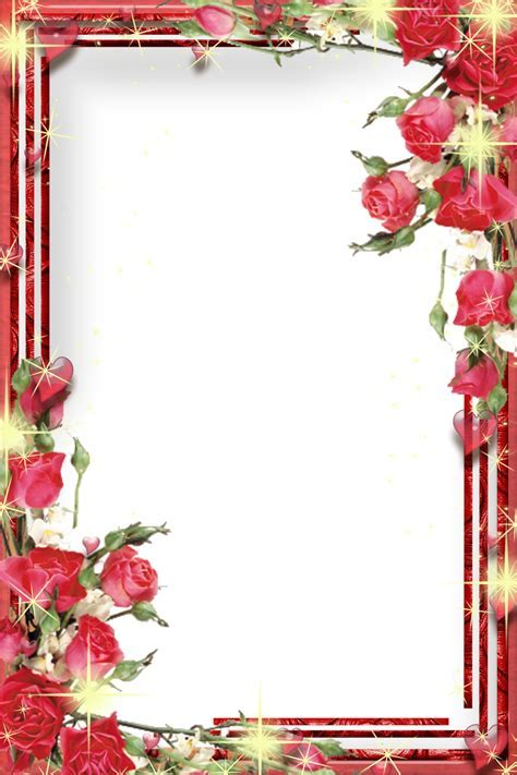 Photo Frame Transparent PNG Pictures   Free Icons and PNG