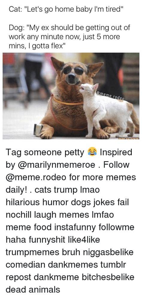 Dog Jokes Meme - 25 best memes about dog jokes dog jokes memes