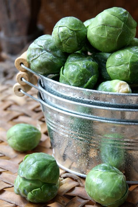 Sprouts Gift Card Survey - recipe stir fried brussels sprouts with cashew nuts and garlic from our food fixer