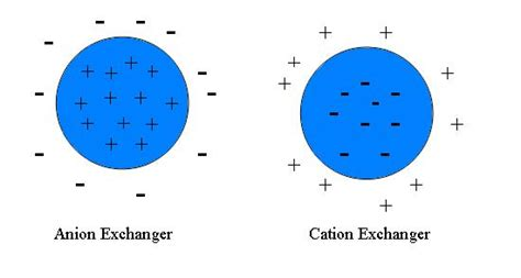 file cation anion exchanger jpg wikimedia commons