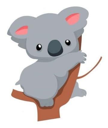 imagenes bellas de koalas imagenes de koalas animados tiernos imagenes de la