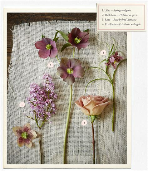 Wedding Flowers Guide ? Types & Ideas   B Inspired   BHLDN
