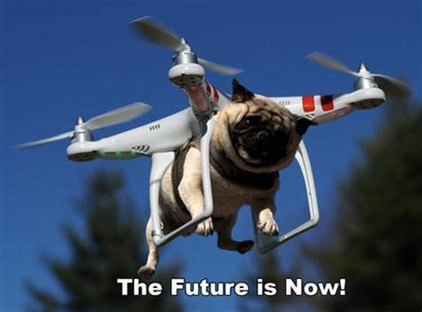 pug delivery testing out new drone delivery system pug copter the future is now