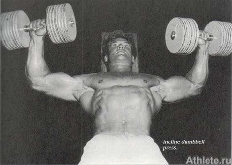 steve reeves bench press exles of the fully developed quot high pecs quot bodybuilding com forums