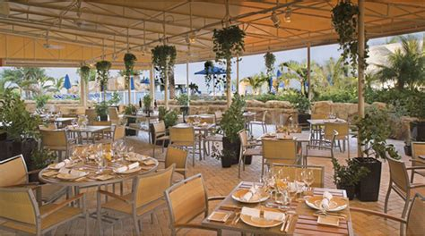 miami s best hotel brunches forbes travel guide stories