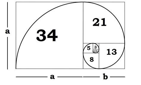 define golden section understanding the fibonacci sequence golden ratio