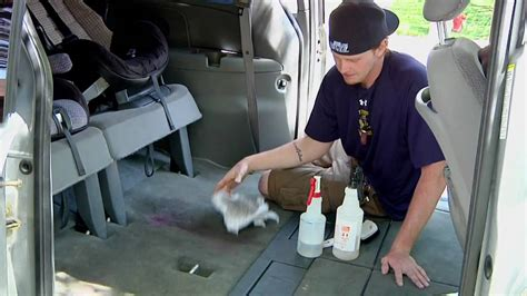 how to get vomit out of couch auto detailing how to get rid of vomit smell in a car