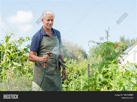 senior man watering image photo  trial bigstock