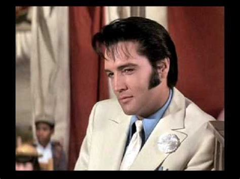elvis clean up your own backyard elvis clean your own backyard