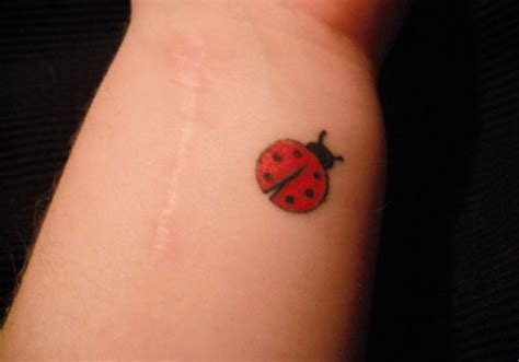 ladybug tattoos pictures ladybug tattoos pictures to pin on thepinsta