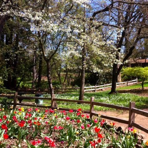 Carmichael Gardens botanical garden carmichael ca summer road trip