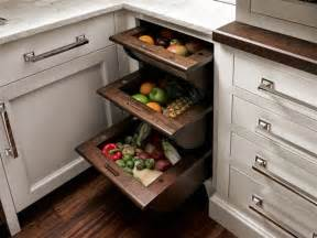 Kitchen Cabinet And Drawer Organizers Fruit And Vegetable Drawers Traditional New York By Trish Namm Allied Asid Kent Kitchen