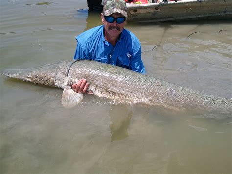 Records Corpus Christi Tx Cleveland Angler Sets New State Catch And Release Record