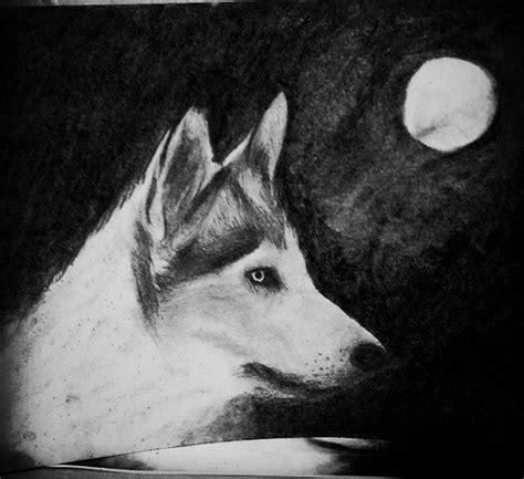 imagenes en blanco y negro de un lobo dibujo de un lobo en blanco y negro a carboncillo black