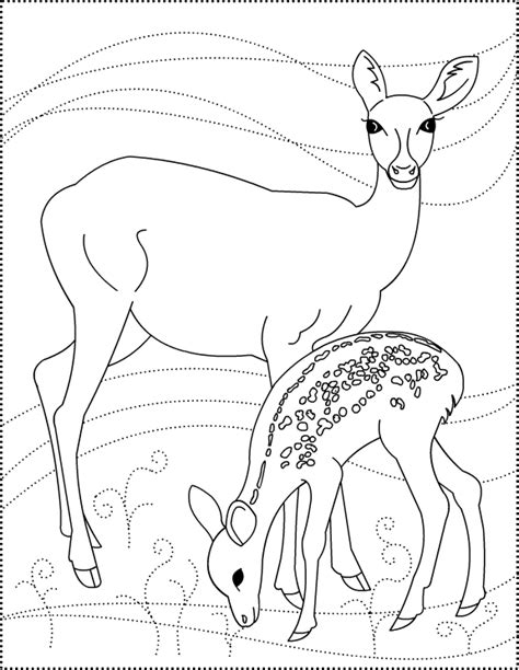 deer coloring pages s free coloring pages dear to me deer coloring