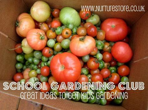 School Gardening Club Ideas Top 25 Best School Gardens Ideas On Garden Crafts Outdoor Classroom And