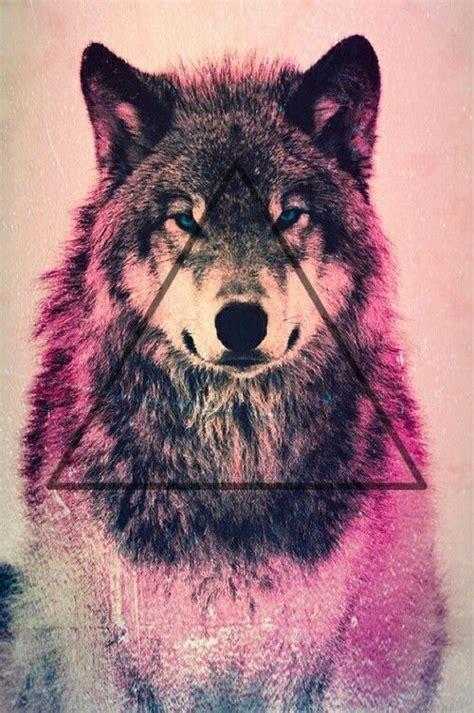 imagenes tumblr lobos fondos de lobos para celular fondos de pantalla