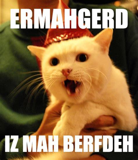 Ermahgerd Happy Birthday Meme - 17 best images about ermahgerd cat on pinterest cats