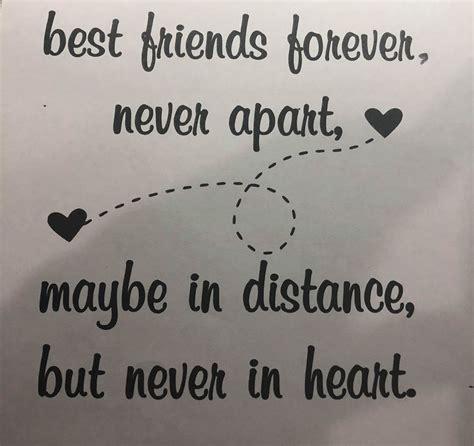 best friends forever real rose best friends forever forever domes