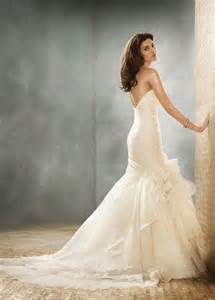 fit and flare wedding dress beautiful photos of organza fit and flare wedding dresses sang maestro