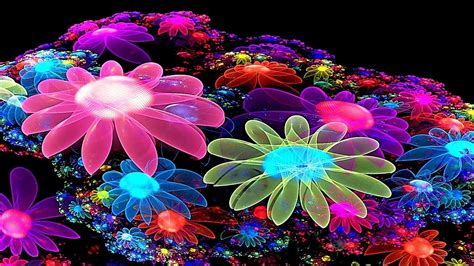 colorful live wallpaper colorful flower wallpaper 3d best hd wallpapers