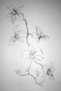 flowers drawings in pencil free large images
