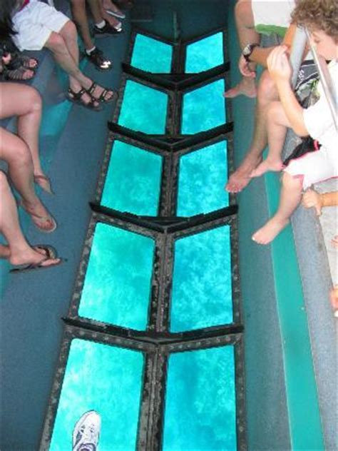 glass bottom boat key west reviews this gives you an idea of how the glass bottom looks