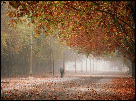 imagenes bellas lloviendo el verdadero tesoro