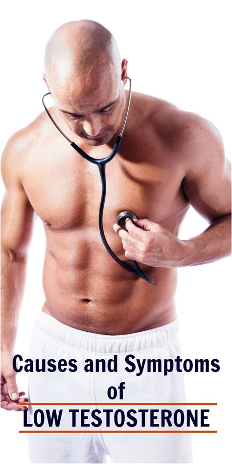 testosterone definition of testosterone by medical low testosterone medically known as hypogonadism is a