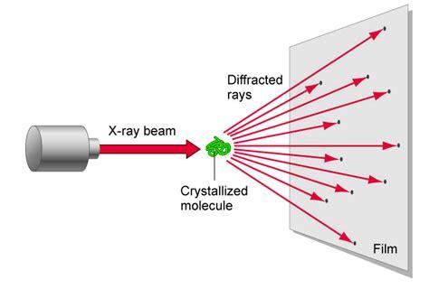 protein x crystallography crystallography x x crystallography