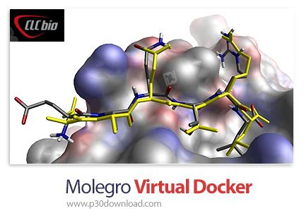 Tutorial Molegro Virtual Docker | molegro virtual docker v6 0 a2z p30 download full