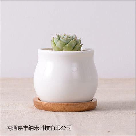 White Flower Pot Compare Prices On Bonsai Pot Tray Shopping Buy Low