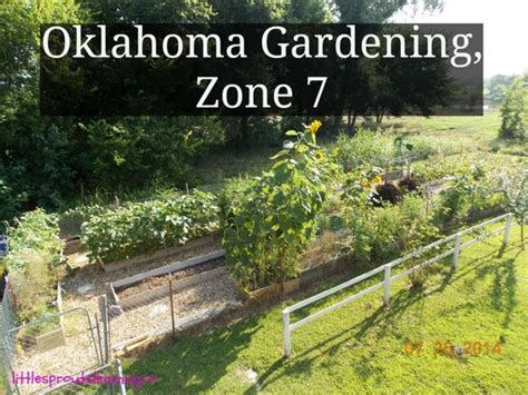 oklahoma vegetable gardening other gardening and oklahoma on