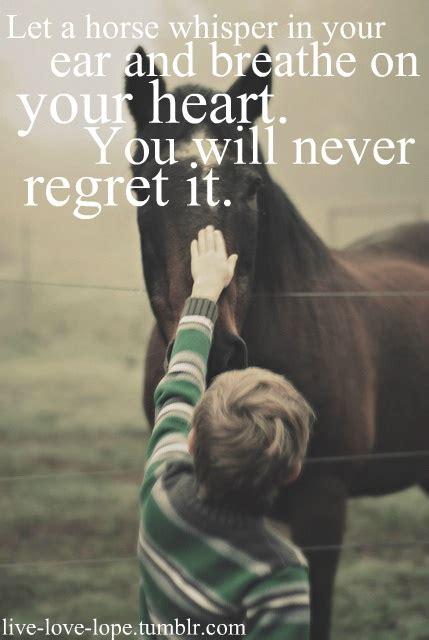printable horse quotes simple horse quotes quotesgram