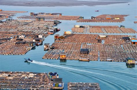 living on a boat at sea uk china s tanka boat people s floating homes daily mail online