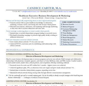 director of business development resume resume ideas