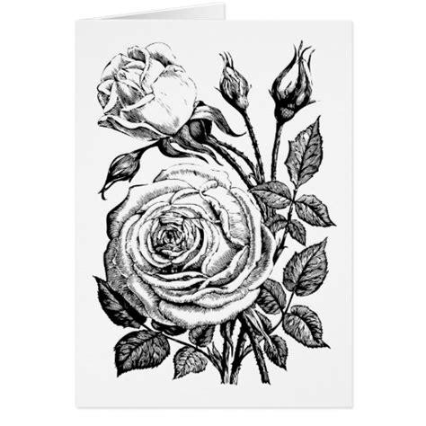 imagenes en blanco y negro de rosas rosas en blanco y negro dibujos imagui