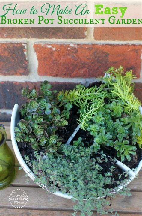 how to make a succulent container garden how to make an easy broken pot succulent container garden
