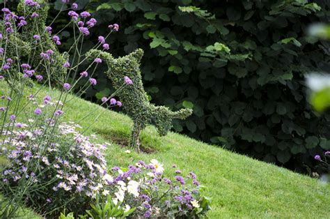 rabbit topiary topiary animals bespoke topiary plant sculptures
