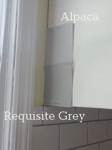grey vs gray color sherwin williams alpaca vs requisite gray home
