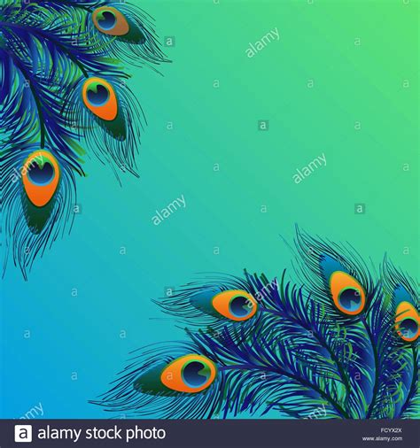 peacock background background design with peacock feathers stock vector